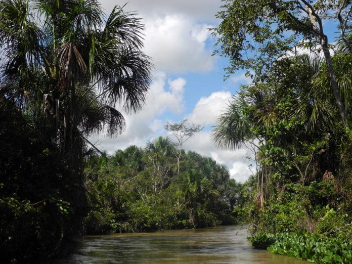 Río Orinoco Venezuela